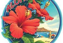Hawaii vintage