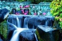 Next Bali trip / Travel