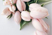 Flower- Power  / Thank God for flowers!  #LOVE