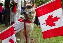 Canada Day / The national day of Canada!