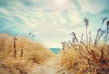 Beach Please / All things beach & summer