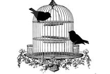 ~ bird cages/houses~ / by D I N Y ➕
