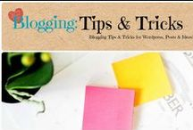 Blogging: Tips & Tricks / Tips & Tricks for Wordpress, writing, content and anything blogging.  / by Denyse {Glitter Glue & Paint}