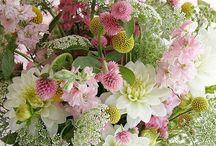 ~ flowers ~ / by D I N Y ➕