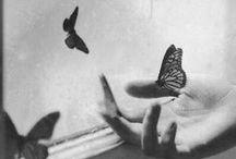 Black-White Photography