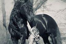 * CHILDREN * / The children are so beautiful next to a horse                                    *  Les enfants sont si beaux à côté du cheval