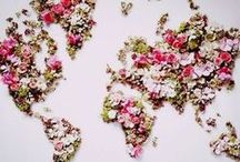 world / our beautiful world