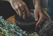 Plant Spirit Medicine / An earthy brew of practical and spiritual herbalism.