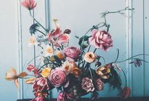 This Still Life / Gorgeous art, creativity curated