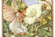Flower Fairies!