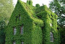 Green Building / Living roofs, green walls and everything that is green outside.  Zelena gradnja - zeleni krovovi i vertikalne bašte.
