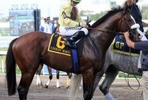 ♥ Union Rags ♥ / by ✽ ℂℋℜⅈStⅈℕÅ ✽