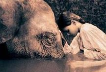 F☮r all animals they need our voice and our help! /             ♥Make PEACE for the M☮MENT♥     Change yourself & you can change the world