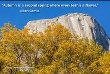 Nature Quotes from Nature Lovers / Beautiful quotes paired with beautiful pictures to inspire your love of Yosemite and the outdoors.