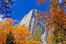 Autumn Colors in Yosemite / A beautiful time of year as leaves change color and a quiet magic takes hold of the park. Pin your favorite Yosemite autumn images here and see how others are inspired by this magical season! / by Yosemite Conservancy
