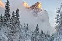 Yosemite's Winter Wonderland / Let these beautiful Yosemite winter images inspire you! / by Yosemite Conservancy