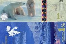 Arctic Territories FUN Notes / Banknotes (paper money) featuring polar bears and other arctic animals.