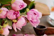 Spring Tablescapes  /Tavaszi asztal