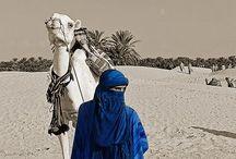 Touareg , chevaux Arabes ,Leurs Cavaliers , le Désert.. / Majestueux / by Marie France Martineau