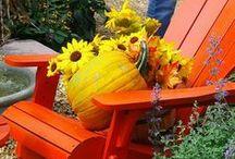 Fall Decorating // Őszi Dekorációk