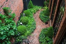 Urban gardens: an escape oasis