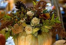 Thanksgiving Decor & More / by Cynthia Rose