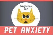 Anxious Pet / Separation Anxiety and Other Pet Behavioral Problems
