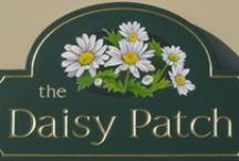 DAISY DEW COTTAGE / Daisy cottage interiors, and exteriors, with a yellow , white theme , including  Daisies and other Flowers    .   Ladies. Please limit pins to 5-6 per day. Thank You so much
