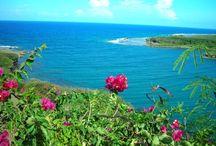 Island Life / glimpses of my life in Guam... Hafa Adai