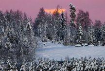 Snowy days  / Beautiful snow ❄️