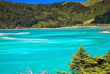 New Zealand  / Everything from New Zealand