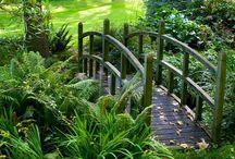 Dream gardens  / Beautiful enchanted gardens