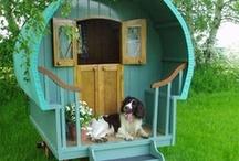 Cool Dog Houses / Dog kennel, dog cottage, dog caravan, dog shack, dog hut, dog home, dog bed, dog furniture