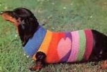 Woolly Dog Jumpers