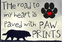 Quotes On Dogs / Every quote has heart felt meaning of how we feel about our much loved dogs, those past and sorely missed, and those present and still enjoyed...