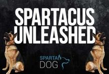 Spartacus Unleashed / The big dog at SpartaDog.com