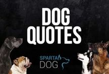 Dog Quotes / Dog quotes, funny dog qoutes, quotes about dogs, famous dog quotes, dog quotes that you'll love / by SpartaDog