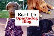 Spartadog Blog / Get updates from our blog.