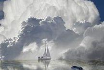 Clichés insolites / Photos décalées ou extraordinaires du monde marin