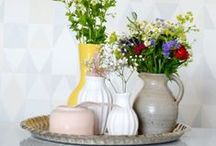 DECORATION PLANTS & FLOWERS / decoration with plants and flowers