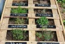 Idées jardinage & bricolage