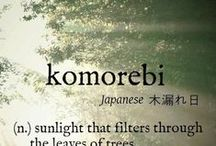 ✿ Komorebi, Sun Light / ♚ / by lovepink 。* 。゜* 。✿