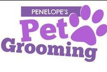 Pet Grooming Business Logos / Logo inspirations for pet groomers & other pet businesses.