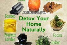 detox my house