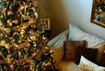 Oº°°ºOhhh Christmas Tree / by HDFloral