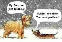 Funny / by Linda McCord Roberts