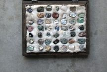 GEM STONES & SEASHELL