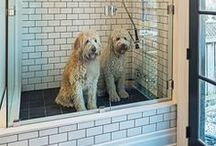 Dog Shower/Bathtub Ideas / I have four dogs and I dream of someday having a dedicated dog wash area in a utility/mud room of my home.