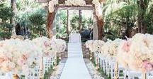 Wedding: The Dream