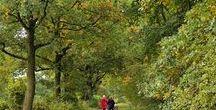 HH: Urbane Natur / URBAN NATURE IN HAMBURG: Landscape & nature conservation areas, parks, waterways & green belts in & around Hamburg, Germany.   --   URBANE NATUR IN HAMBURG: Landschafts- & Naturschutzgebiete, Parks, Wasserwege & grüne Gürtel in & um Hamburg, Deutschland.